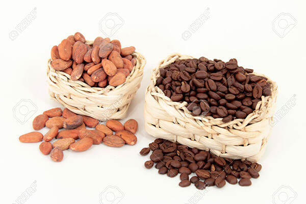 11986686-Cocoa-vs-coffee-Stock-Photo